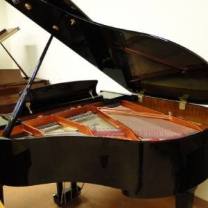 hoffmann and kuhne baby grand sale